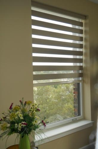 Allure roller shades that act like a blind but roll up and out of the way like a roller shade.  Sold by Gotcha Covered.