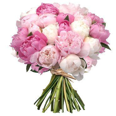 Un si joli bouquet de pivoines roses et blanches