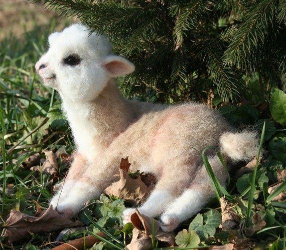 Baby alpaca! How cute can you get? baby alpaca!! baby alpaca!!!! eu nunca tinha visto uma baby alpaca!! eu quero umaaaaaaa =~~ ~