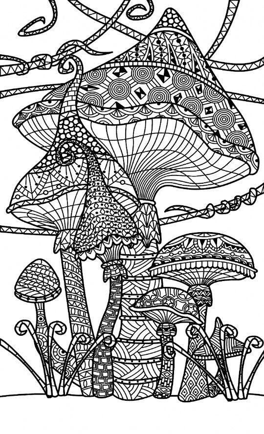mushroom and toadstools zentangle coloring page  with
