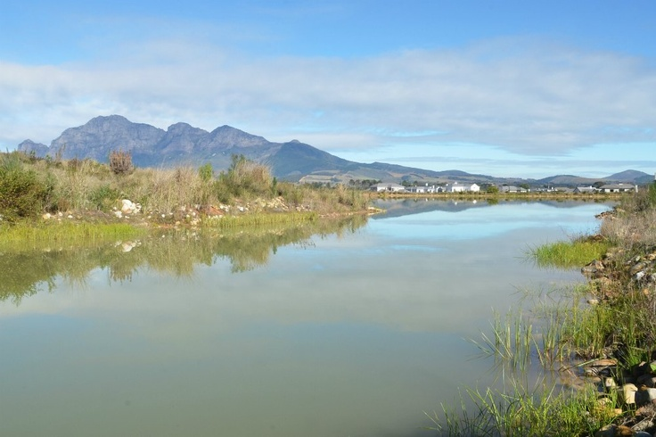 Views from Val de Vie's Lakes    http://www.valdevie-properties.co.za/component/estateagent/property/65/val-de-vie-estate-vacant-land-for-sale.html