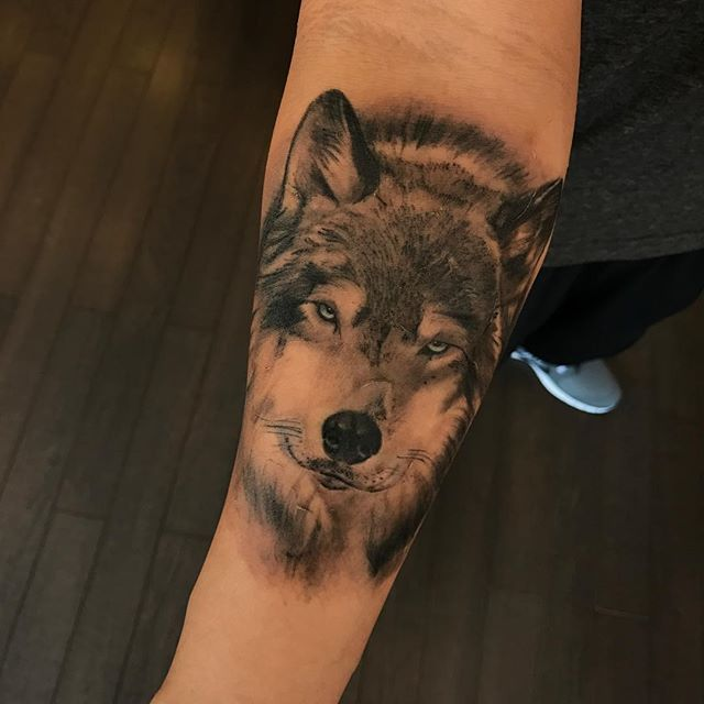 One week healed wolf by Jean! @jeantattooart . For consultations, information and appointments call the studio at 305.531.0204 or email info@miamitattooco.com . Jean is proudly sponsored by @MiamiTattooCo and @RadiantColorsInk . #miamitattooco #miamibeach #southbeach  #miamitattoos #geo #miami #sullen #radiantcolorscrew #watercolortattoo #watercolor #colortattoo #tattooartist #abstracttattoo #watercolourtattoo #watercolortattoos #abstract #watercolour #color #surrealist #surrealismo…