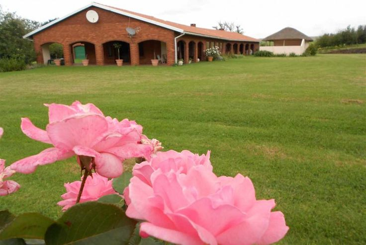 1.  Mooi River farm for sale. Mooi River farm with a multitude of agricultural opportunities.