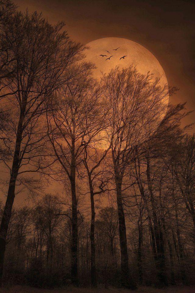 33 beautiful night time - photo #20
