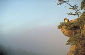 Hiking in Ontario's Algonquin Park: A Guide