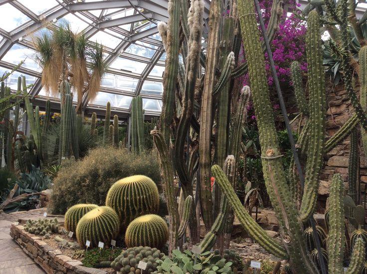 Superb Botanischer Garten Berlin Berl n Opiniones de Botanischer Garten Berlin TripAdvisor