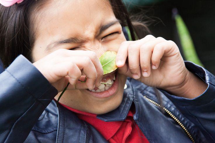 Using our sense of smell. Catherine (BBOWT) Photographer:Mr Monir Ali