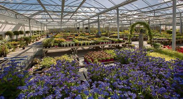 Check out who won Best Garden Centre in Ireland and all the other Garden Centre Awards