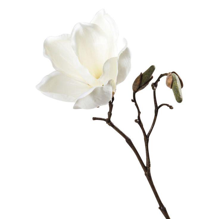 Die besten 25+ Farbe magnolia Ideen auf Pinterest