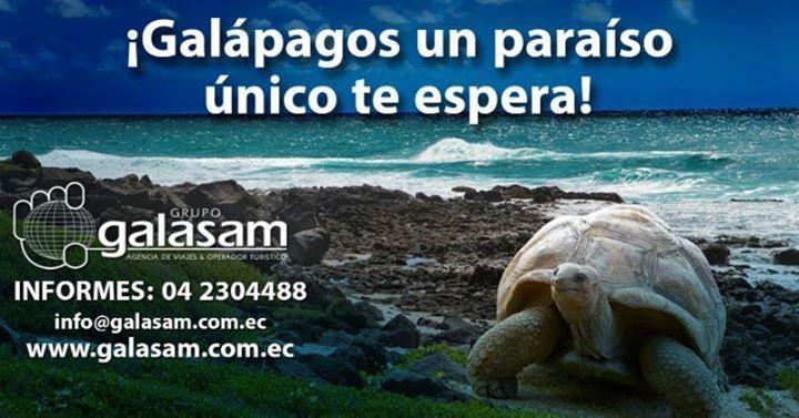 Vacaciones en Galápagos 4 días  DÍA 1 BALTRA - SANTA CRUZ - ESTACIÓN CHARLES DARWIN Salida hacia las Islas Encantadas arribo al aeropuerto de Baltra recepción por parte de nuestros guías acreditados por el Parque Nacional traslado a Santa Cruz y acomodación en el hotel. Por la tarde visita a la Estación Científica Charles Darwin y al Centro de Interpretación del Parque Nacional Galápagos para admirar los exhibidores de tortugas e iguanas terrestres. Retorno al hotel. DÍA 2 TORTUGA BAY…