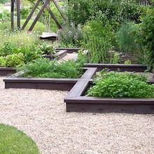 Декоративный огород: фото оформления красивого огорода своими руками, идеи декора огорода и сочетание овощей