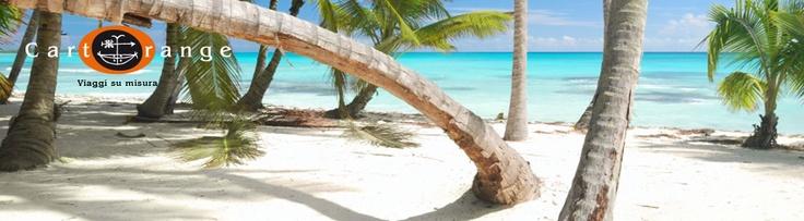 Un isola, una palma e il suono del mare....