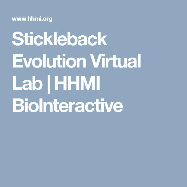 Fossil Record of Stickleback Evolution