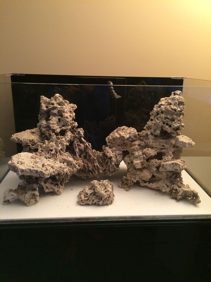 Aquascaping, Show your Skills... - Page 51 - Reef Central Online Community