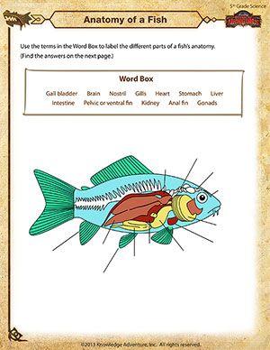7 best мой документы images on Pinterest   Classroom ideas ...
