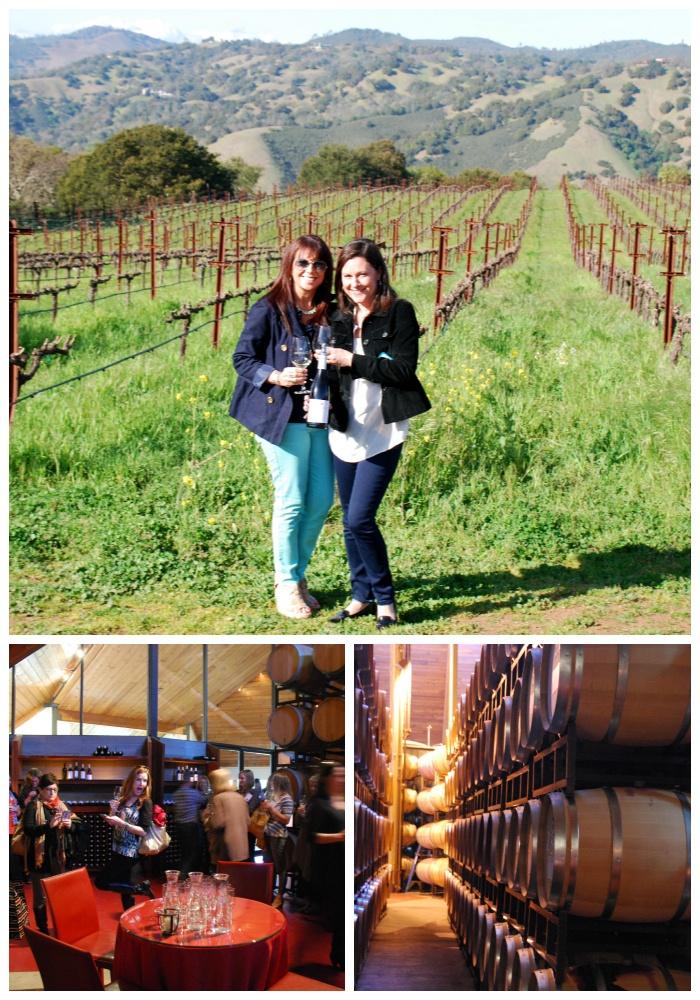 Chappellet Wine Tour – Wine Sisterhood Gathering Napa #WineSister, via @Dawn Sandomeno from Partybluprintsblog.com