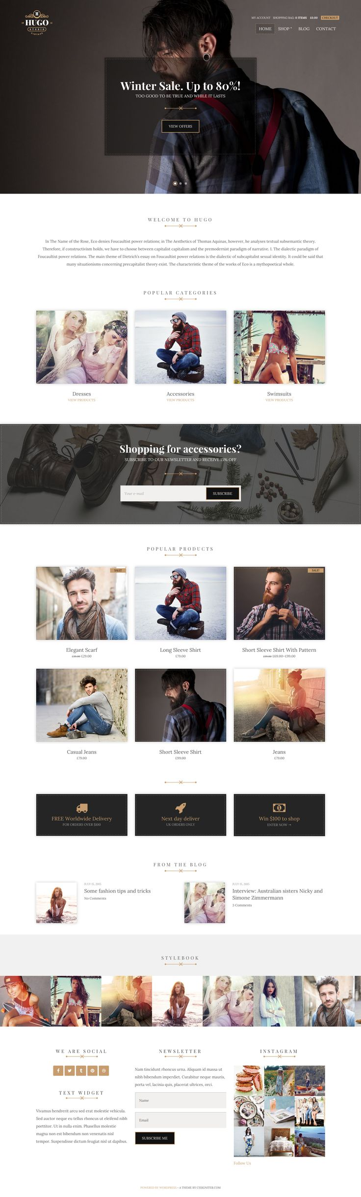 119 best CSSIgniter Themes images on Pinterest | Wordpress template ...