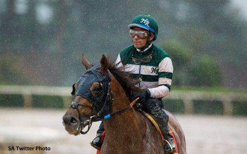 Accelerate Pulls Away Late, Gives Sadler His First Big 'Cap Victory - Horse Racing News | Paulick Report