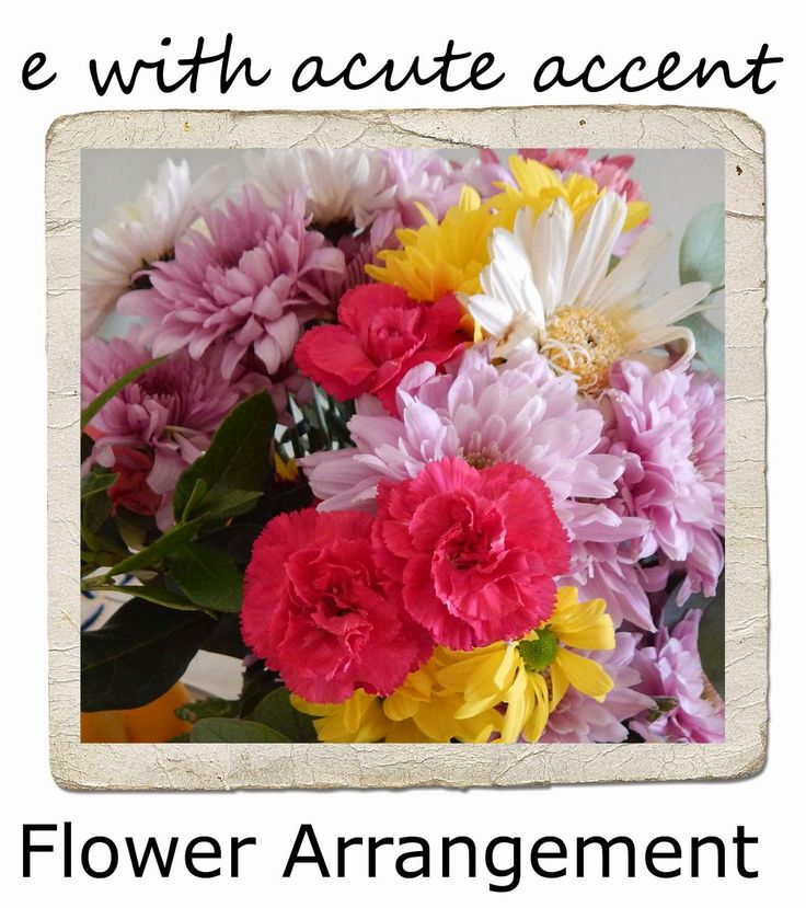 e with acute accent Flower arranging
