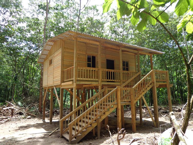 Tiny houses on stilts google search guatemala for Hunting cabin house plans