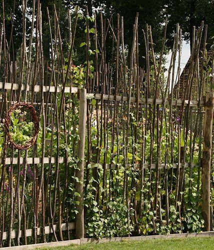 idée de départ. mais pas avec les branches qui montent en hauteur comme ça... Joli. :) Avec des grimpantes aux pieds des clôtures.