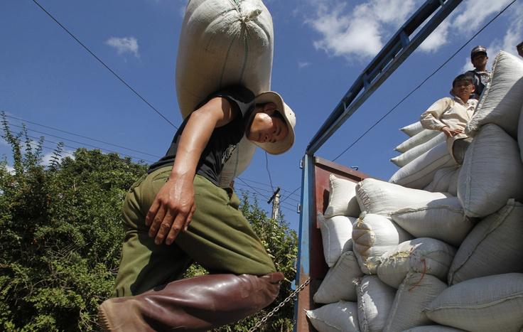 Un contadino trasporta chicchi di caffè a Hanoi, in Vietnam. (Kham, Reuters)