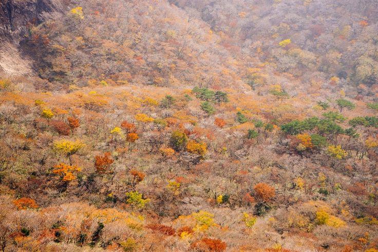 한라산의 가을