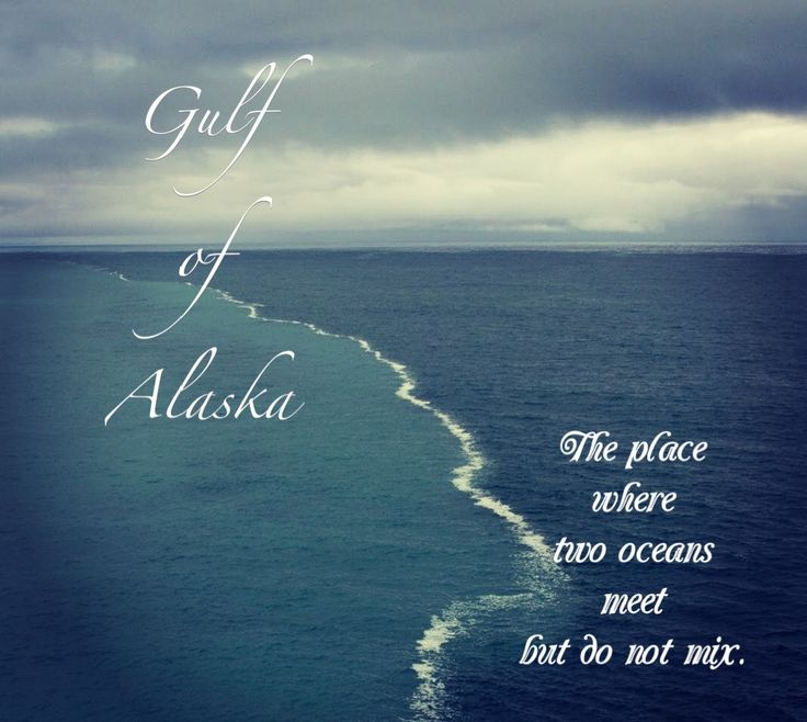 he place where two oceans meet in the gulf