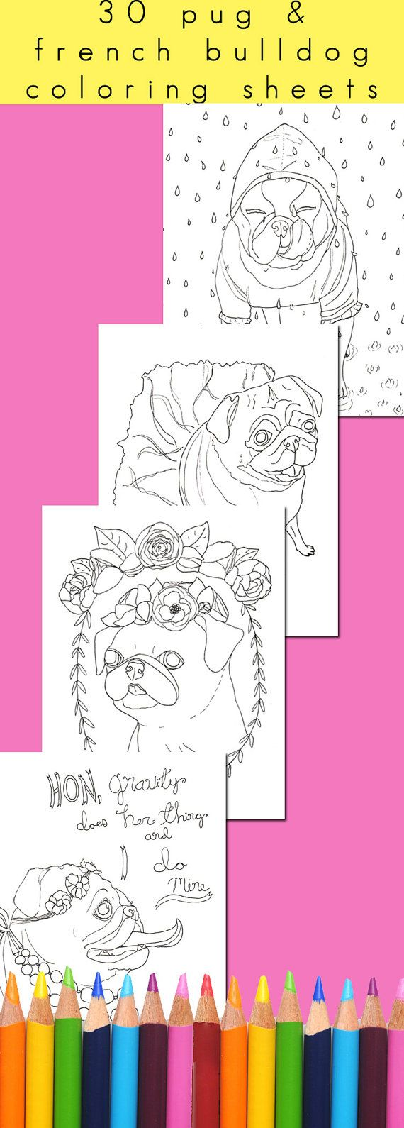 "French Bulldog & Pug adult coloring book - squee!! It's called ""Flat Faced Friends"", and you NEED it."