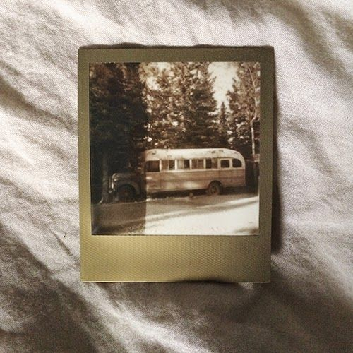 TO BE SHELVED: I Accidentally Found the Into the Wild Bus in Alaska