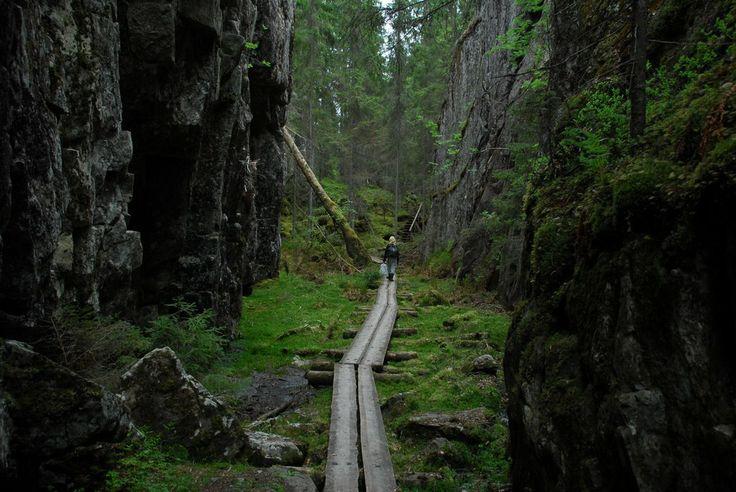 Orinoron rotko Leppävirta - Suomi cooooool I've been here