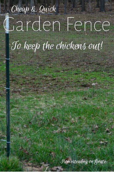 Inexpensive Garden Fence: