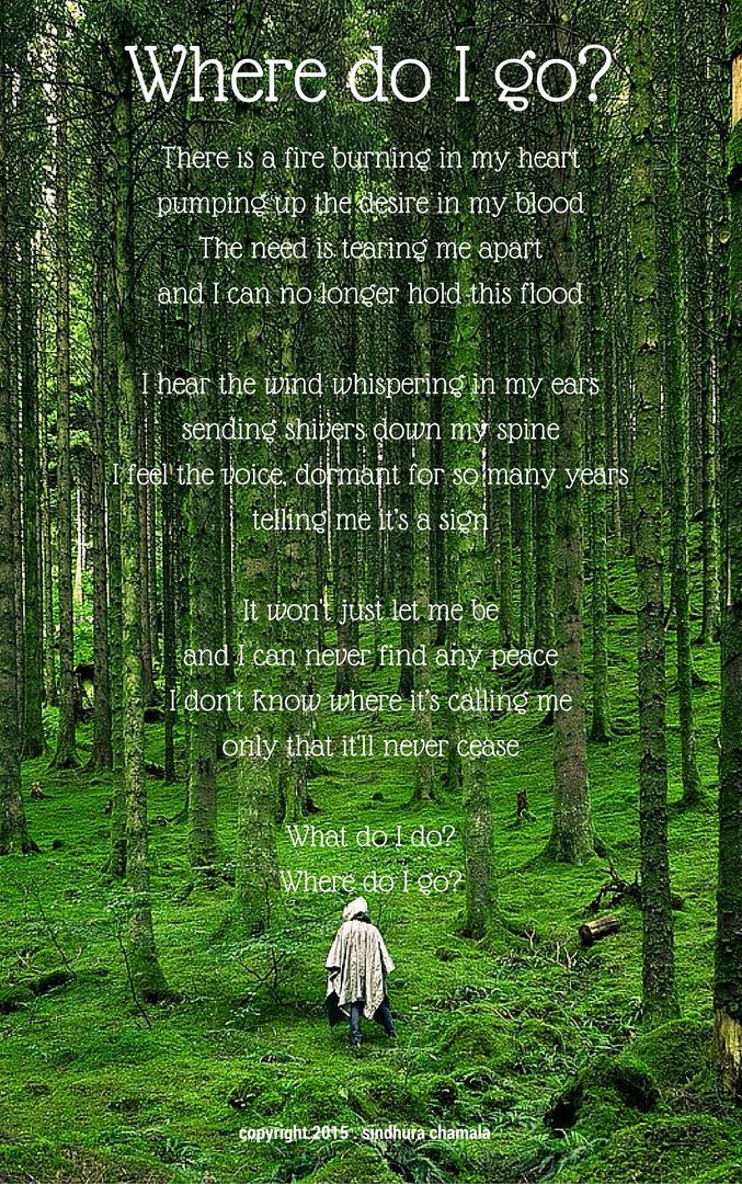 Where do I go? #Poem #Poetry #Lost