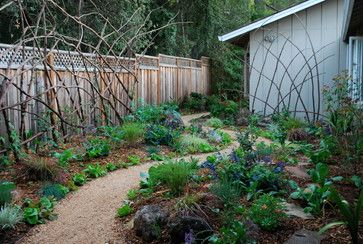 Redwood Branch Trellises - eclectic - outdoor products - san francisco - Steve Masley Consulting and Design
