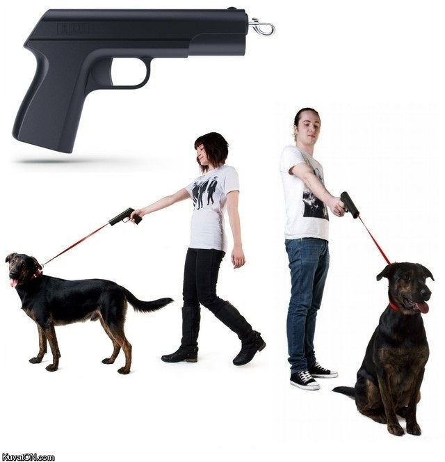 https://i.pinimg.com/736x/77/39/ca/7739cabfa99a67c9c7baa90bed3676b5--dog-leash-funniest-pictures.jpg