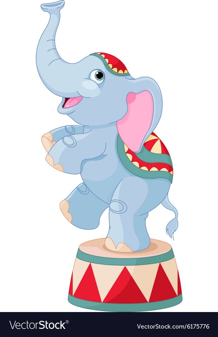 Download Illustration of cute circus elephant on pedestal. Download ...