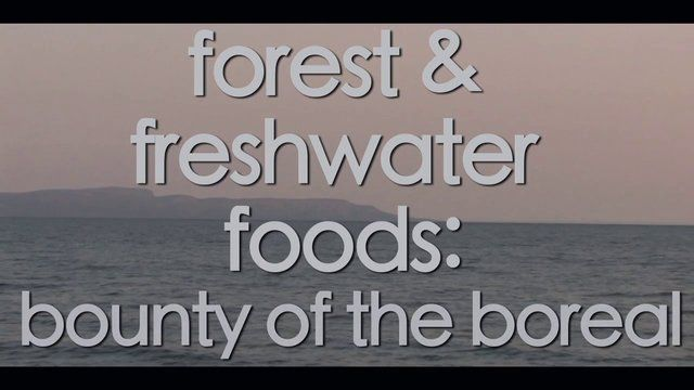 EARTH_FIRST @ #CrewCANADA / EssOntario-GardenCity DreamTeam ForestFoods ForestClassRooms  For Rest Learn TheVALUE ofNature Its Easy as BasicInstinct.