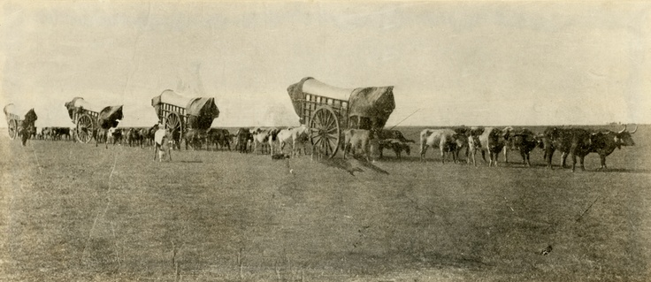 May 16, 1843: Departure of the first major wagon train from Elm Grove, Missouri towards the Pacific Northwest, via the Oregon Trail. Conestoga Wagons on the Prairie, 1860s