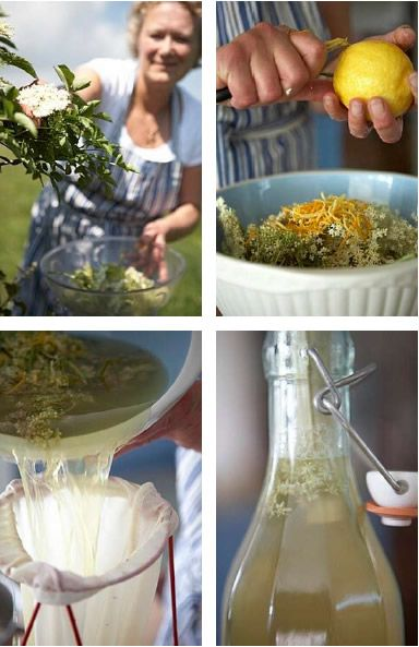 Elderflower cordial - citric acid optional.