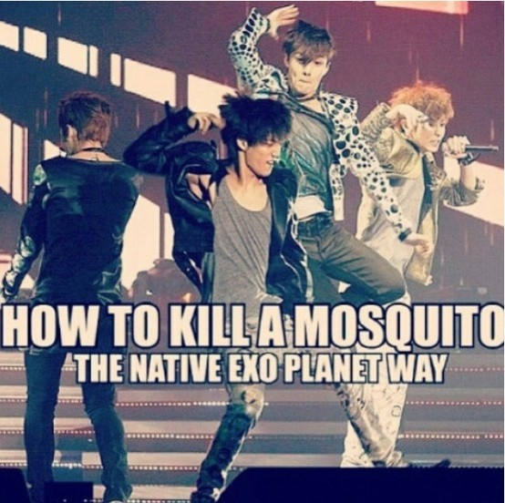 How to kill a mosquito the exo way :D #exo #kpop