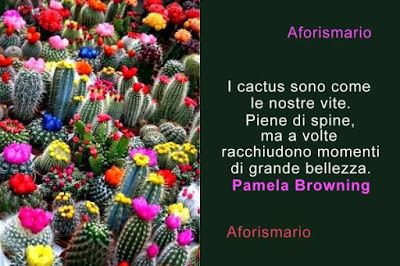 Cactus E Piante Grasse Aforismi Frasi E Citazioni Aforismario