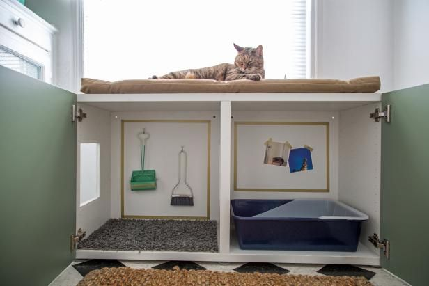 How to Conceal a Kitty Litter Box Inside a Cabinet | Interior Design Styles and Color Schemes for Home Decorating | HGTV >> http://www.hgtv.com/design/decorating/design-101/how-to-conceal-a-kitty-litter-box-inside-a-cabinet?soc=pinterest