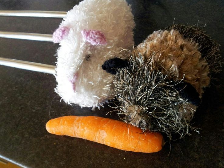 Knitted guinea pigs