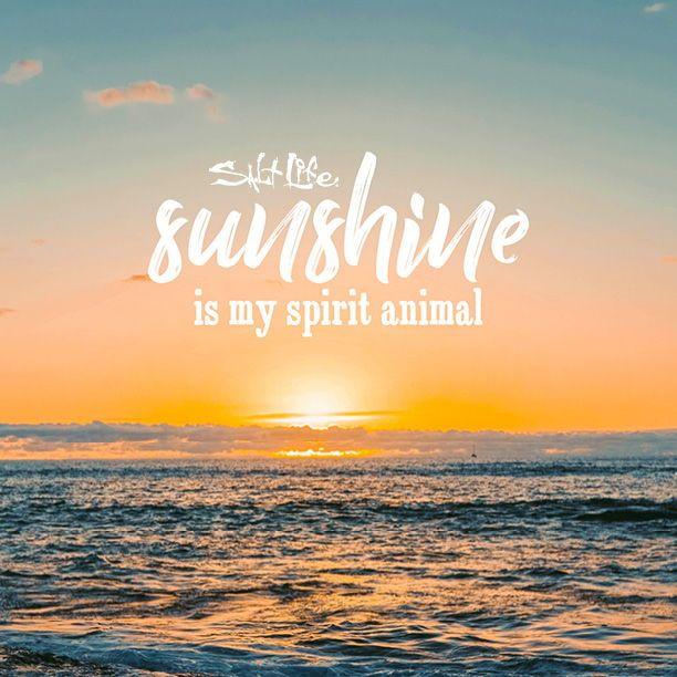 Sunshine Beach Quotes Sunset Quotes Sea Quotes