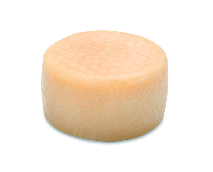 Cider fusion cheese