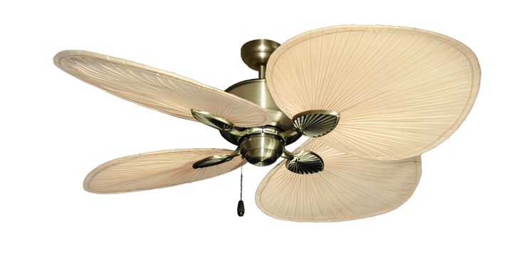 1000 Images About Design Your Fan On Pinterest