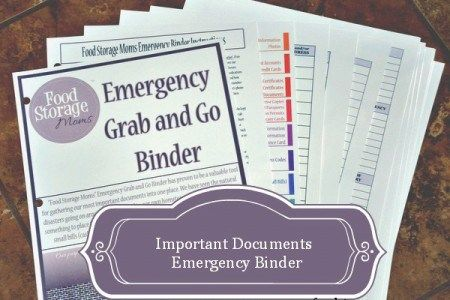 The Grab and Go Binder from Food Storage Moms. Make it a part of your Family Emergency Binder system.