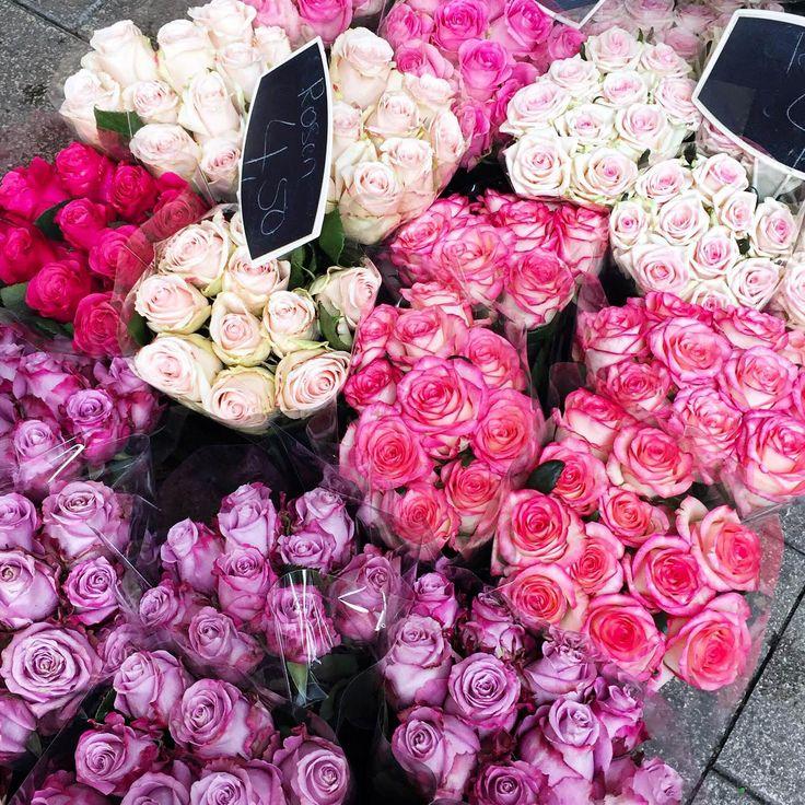 pink-flower-corner