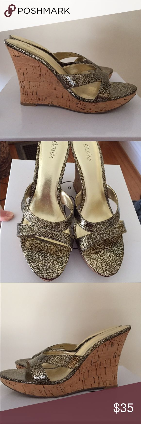 Charles by Charles David These cute wedges are from Charles David.  They are new without tags. Charles David Shoes Wedges