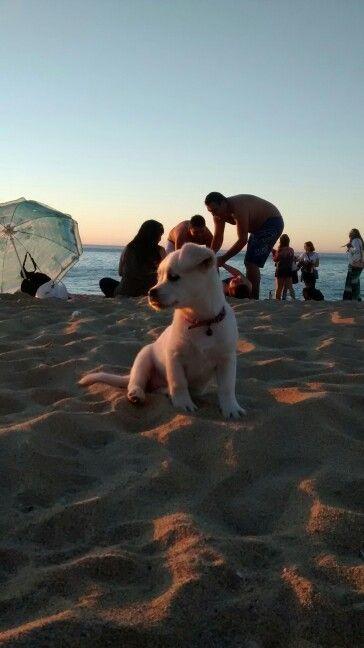 In the beach!